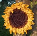 recycled fabric sunflower by Sue Clow