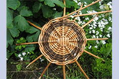 willow basket by Lois Grindey